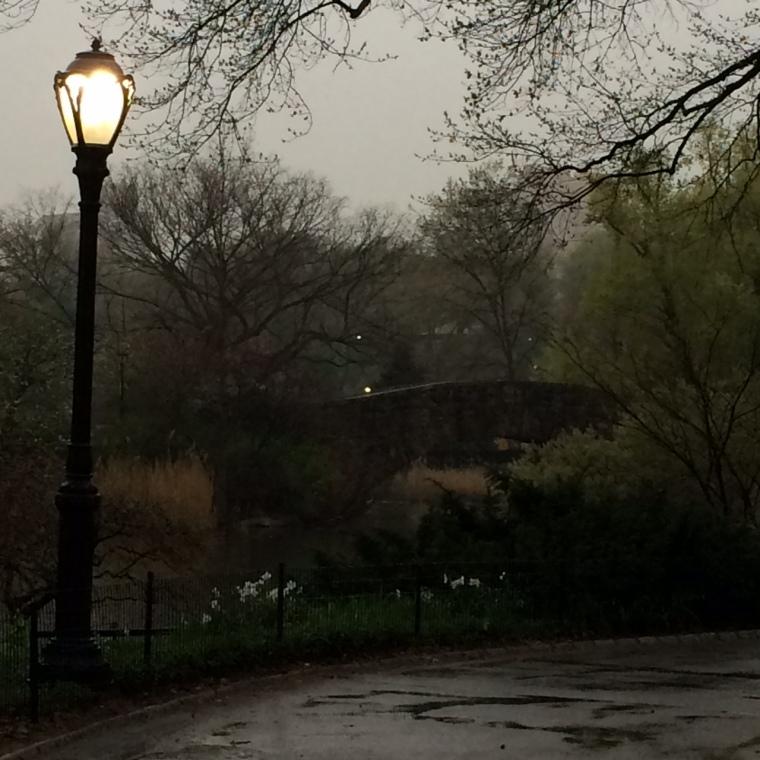 Bride lamp rain