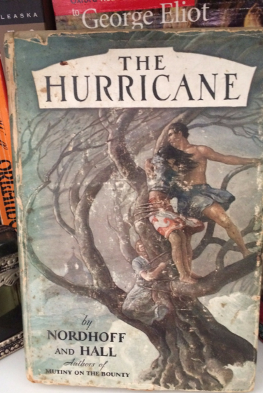 Hurricane book