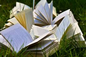books and grass