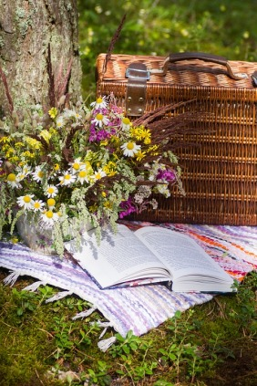 picnic basket and book