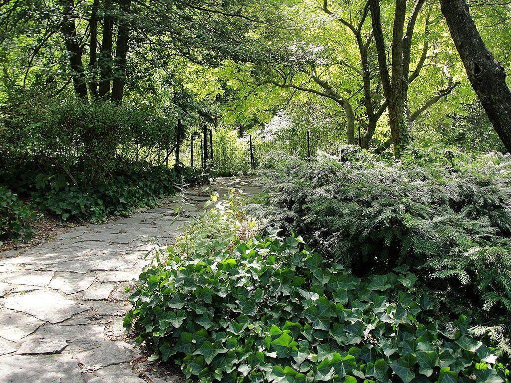Shakesphere_Gardens_-_Central_Park_NYC_-_panoramio