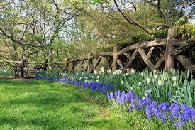 spring Shakespeare Garden