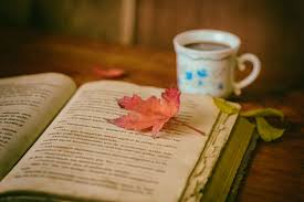 book autumn leaf