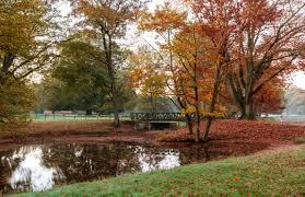 Sept pond w bridge