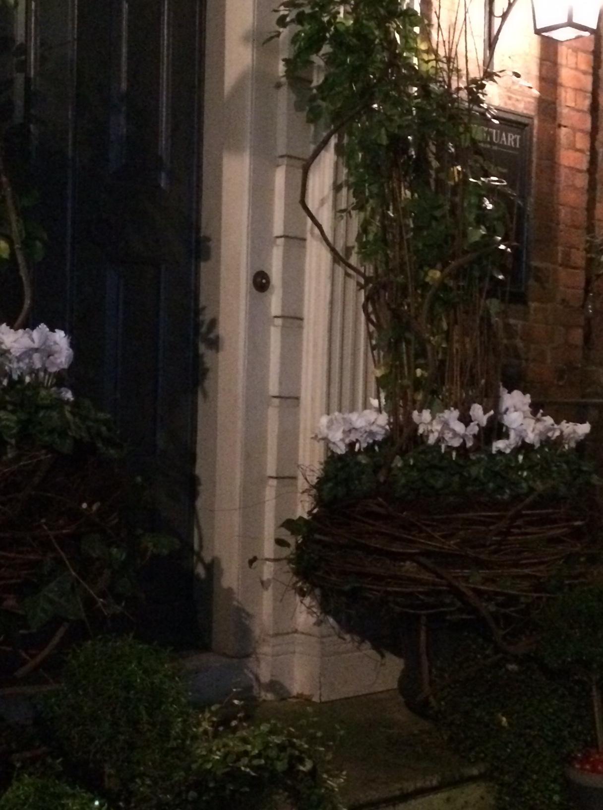 Ian night white flowers