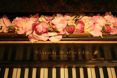 V piano roses