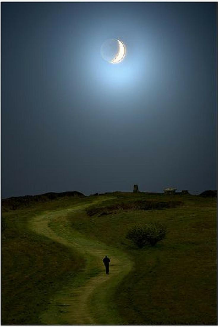 moonlit walk crop