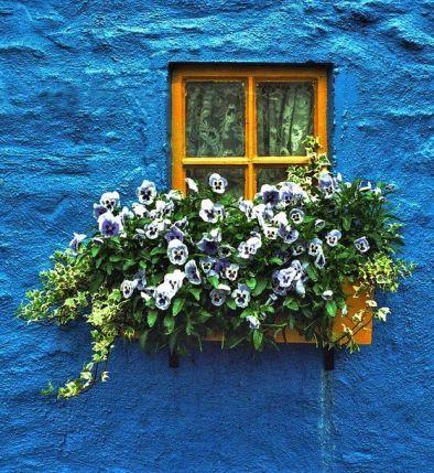 blue Ireland house