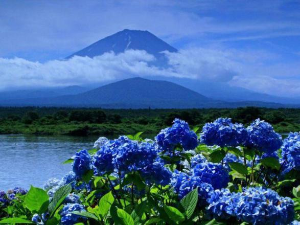Azores 1