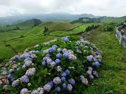 Azores 3