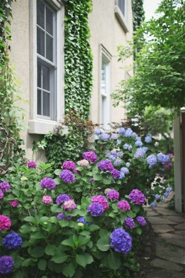 hyd garden elegance