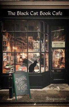 Bookshop 3 Halloween