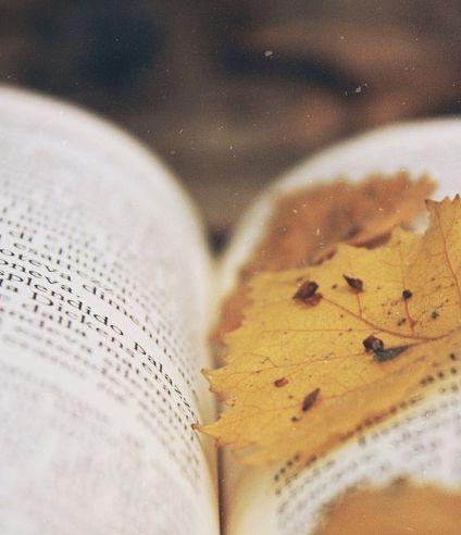 Sept book1