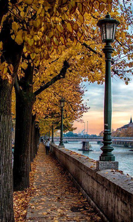 Verona fall