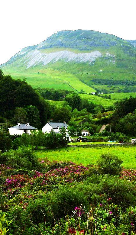 houses and green hills