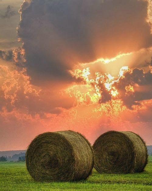 rolls of hay sunset