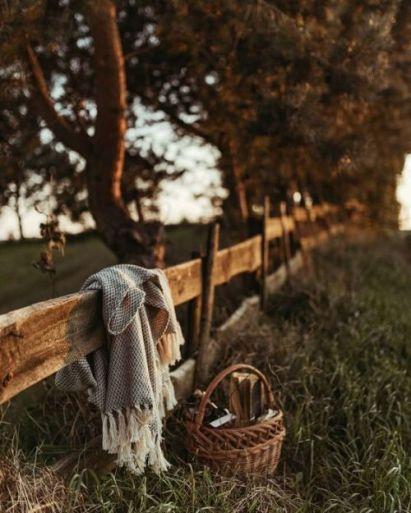 U picnic