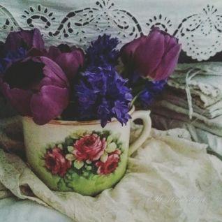 U teacup flowers